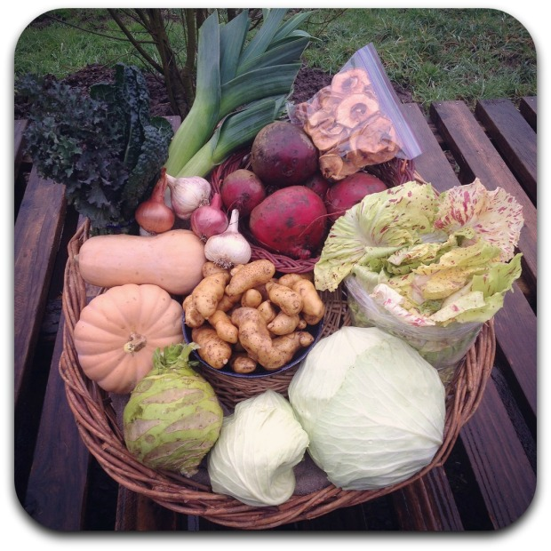 winter csa share week 4