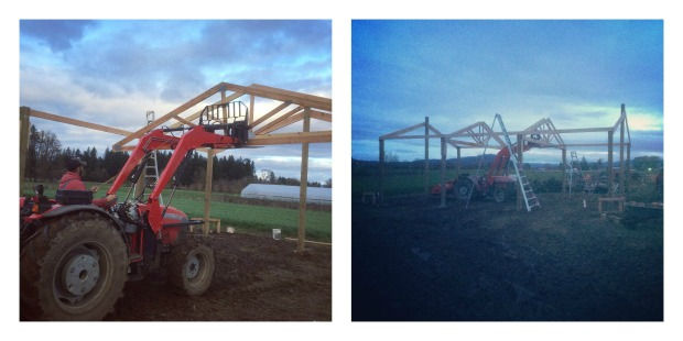 pole barn trusses2