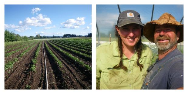 potatoes and farmers