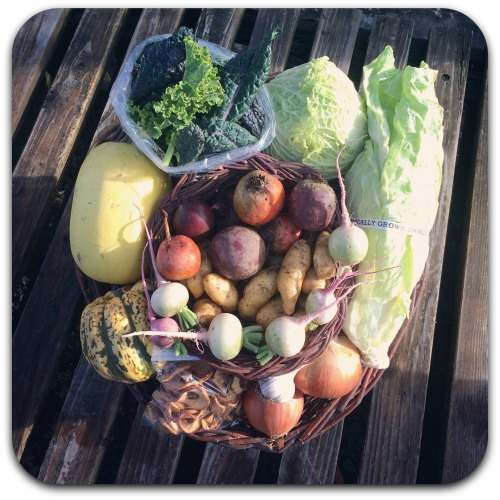 winter-csa-share-week-3