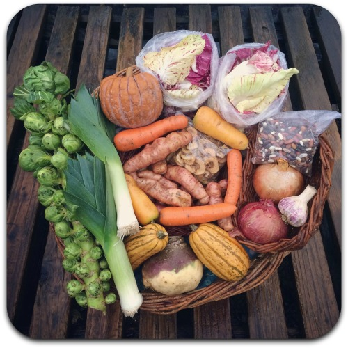 winter-csa-share-week-4