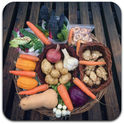 winter-csa-share-week-5