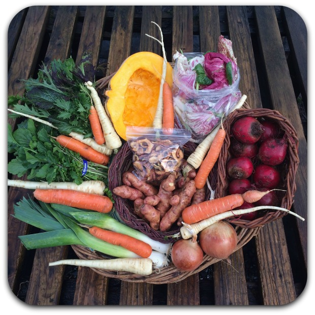 winter-csa-share-week-6