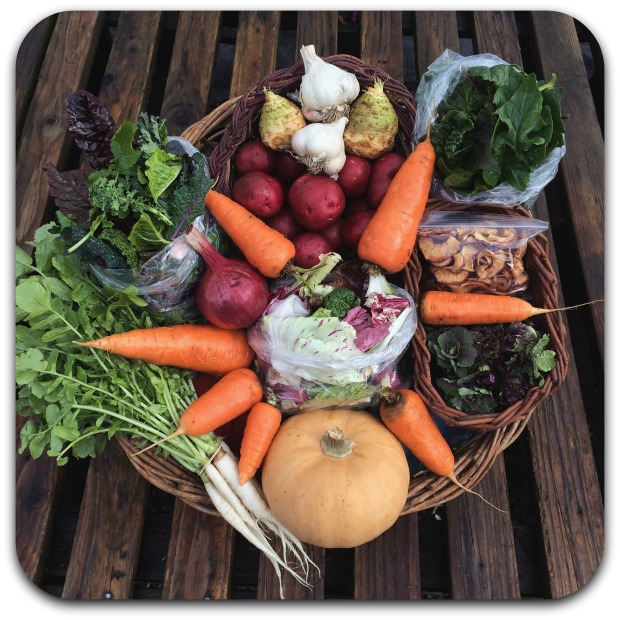 winter-csa-share-week-7