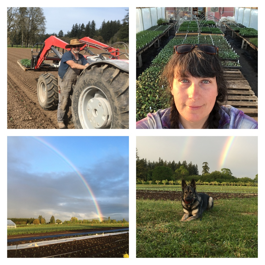 Farmers with a tractor and plants, rainbow over the farm, and Leo the German Shepherd.