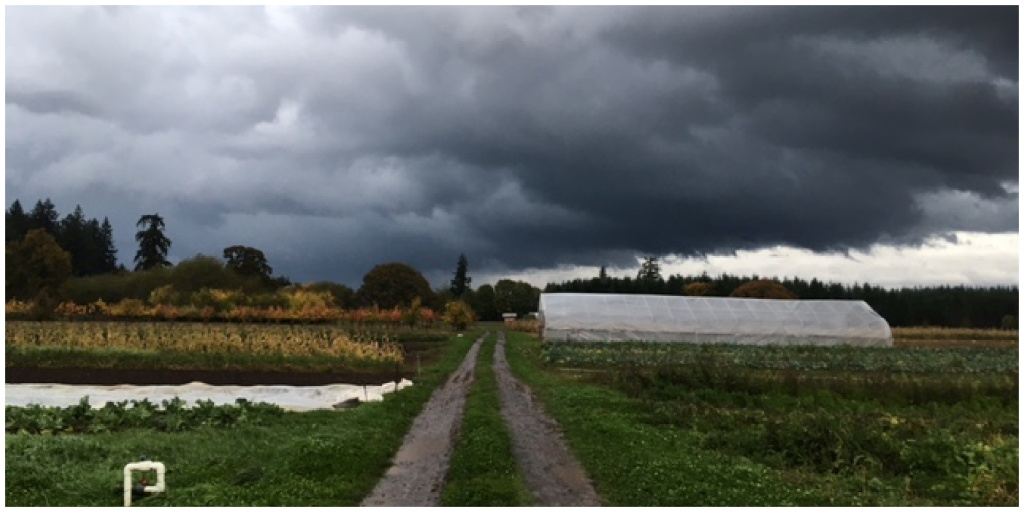 Photo of storm clouds above the fall farmscape.